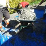 Loading Gravel for wicking beds