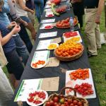 2017 Tomato Fest