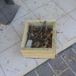 Making home for polllinators