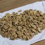 Addy's Jarrah Pumpkin seed, a great result from 1 pumpkin