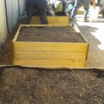 Soil & compost in