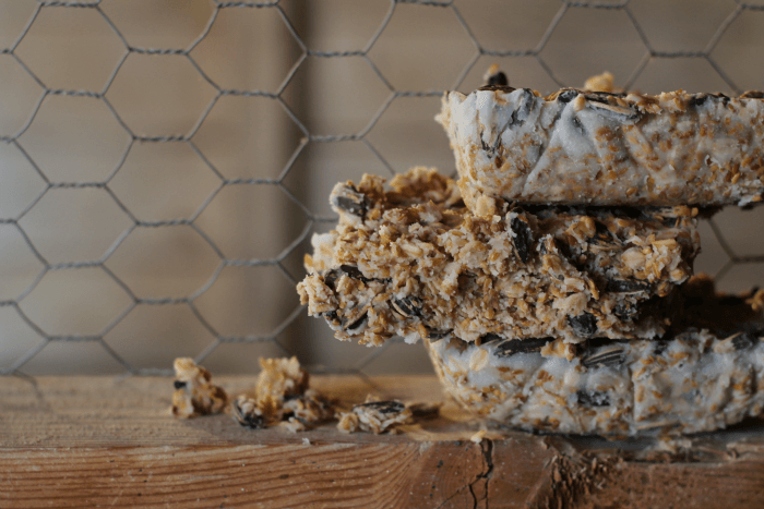 Home-Made Suet Blocks for Chooks