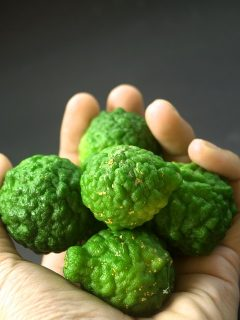 Kaffir Lime Health and Culinary Uses