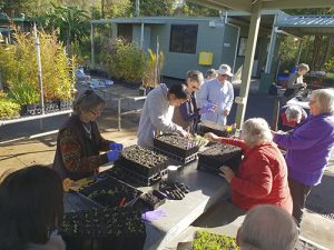 seed savers group
