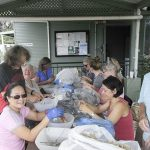 Our dedicated group of happy helpers hard at work cleaning and packaging seeds